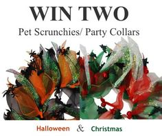 Enter to WIN! - no purchase necessary