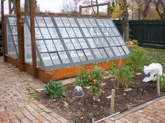 Cold frame/greenhouse