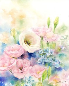 夏の薔薇(トルコ桔梗)