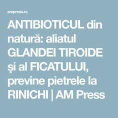 ANTIBIOTICUL din natură: aliatul GLANDEI TIROIDE şi al FICATULUI, previne pietrele la RINICHI | AM Press Thyroid, Smoothie, Health, Medicine, The Body, Health Care, Smoothies, Healthy, Salud