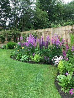 Amazing Garden Decoration Ideas for Your Home - Diy Garden Projects Front Yard Landscaping Design, Outdoor Gardens, Beautiful Gardens, Garden Decor, Backyard Landscaping Designs, Amazing Gardens, Cottage Garden, Plants, Backyard