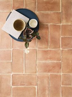 Handmade Terracotta Pale Floor and Wall Tile. Wet Room Flooring, Kitchen Flooring, Terracotta Floor, Wet Rooms, Fireplace Surrounds, Kitchen Tiles, Tiles Texture, Wall Tiles, Cement Tiles