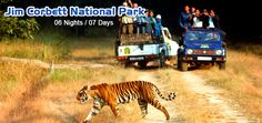 #MastiIndia offers Best #JimCorbettNationalParkTourPackages 2015 From delhi for your wildlife tour. Customize and book your trip at best price according your budget.------http://www.holidaytourpackagesindia.in/jim-corbett-national-park.html