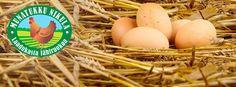 Nikulan tila - intohimona muna     Nikulan tila on kananmunantuotantoon erikoistunut perhetila Somerolla, keskellä viljavaa Varsinais-Suomea. Munantuotanto alkoi Nikulassa jo sotien jälkeen, ja nyt vetovuorossa on kolmas sukupolvi. Nikulan munatukussa pidetään huolta siitä, että tuotanto on laadukasta ja eläimet voivat hyvin.  Virikekananmunat tuotetaan omissa virikehäkkikanaloissa, joissa on muun muassa orret, munintapesät ja kuoputusalueet.