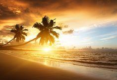 hermoso-amanecer-en-la-playa-.jpg 1,600×1,104 píxeles
