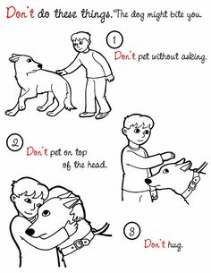 Dog Safety coloring pages literature for kids Animal Rescue