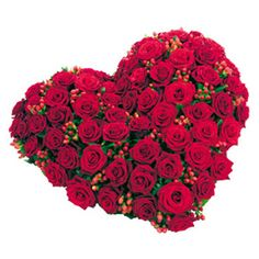 48 Best Love Flowers Images Love Flowers Flower Bouquets Red Roses