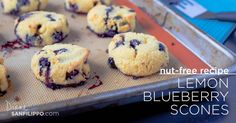 When I learned I needed to eat nut-free, I realized that making some paleo blueberry scones without nuts would be necessary - these are also grain-free!
