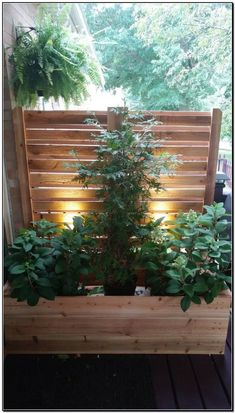 DIY Outdoor Privacy Screen Ideas The screen is made for the majority of seasons. In order to raise the privacy degree, you can add one or more privacy sc. Privacy Planter, Patio Privacy Screen, Deck Planters, Cedar Planters, Planter Boxes, Patio Ideas For Privacy, Privacy Wall On Deck, Pergola Planter, Pergola Screens