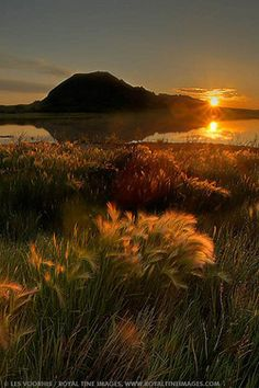 ✯ Bear Butte, South Dakota