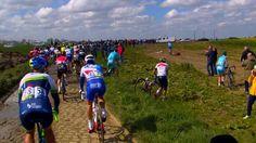 PARIS-ROUBAIX - A 114 kilomètres de l'arrivée, une chute dans le peloton a obligé les coureurs à mettre pied à terre et courrir à travers champs. ICI PARIS-ROUBAIX - A 114 kilomètres de l'arrivée, une chute dans le peloton a obligé les coureurs à mettre...