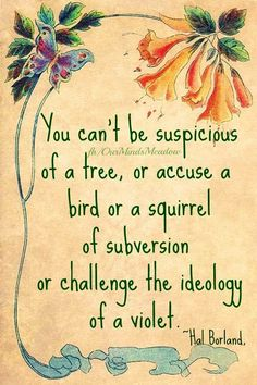 Nature quote via www.Facebook.com/OurMindsMeadow