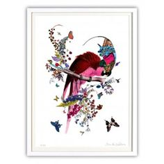 Parrot art print - Available online at everythingbegins.com