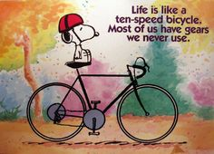 Life is like a ten speed bicycle. Most of us have gears we never use