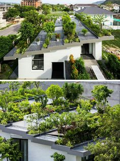 30+ Terrace Gardening Design Inspiration - The Architects Diary