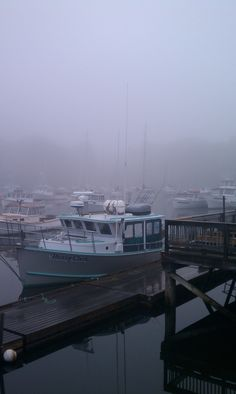 foggy morning in Perkins Cove, Maine