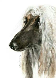 Valerie Moldovan Afghan hound art