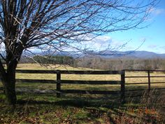 Another gorgeous vista in Earlysville Charlottesville, Mountains, Places, Nature, Pictures, Travel, Photos, Naturaleza, Viajes