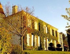 Learn about Chateau Troplong Mondot St. Wine Prices, Wine Tasting Notes, Wine Images, Bordeaux Wine, St Emilion, Cheap Wine, Wine Online, Wine Recipes, Wine Rack