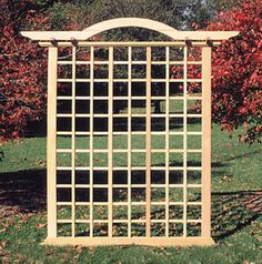 trellis designs climbing plants using trellisto provide a frame for climbing plants and vines outside pinterest more plants gardens and trellis