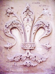 Fleur-de-lis in plaster on building wall in Florence , Italy- very ornate & very botanic