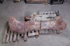 """World's Biggest Dinosaur"" Discovered"