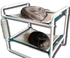this would actually be easily made with PVC pipe and cat or ferret hammocks.  Rover Company Raised Cat Bunk Hammock Pet Bed, Green Trim Rover Company,http://www.amazon.com/dp/B00C1ZVTRK/ref=cm_sw_r_pi_dp_aQ3Psb165T260JKQ
