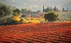 Φωτογραφίες που μαγεύουν: Τα ομορφότερα φθινοπωρινά τοπία του κόσμου! (Photos) - Travel & Deco - Athens magazine