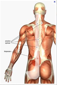 Trigger points. my favorite.