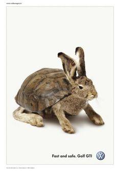volkswagen golf rabbit - Cerca amb Google