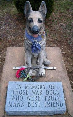 In memory of those war dogs who were truly man's best friend . I so love dogs Military Working Dogs, Military Dogs, Police Dogs, Military Service, Amor Animal, Mundo Animal, I Love Dogs, Puppy Love, Soldado Universal