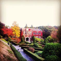 Universidad de Yonsei en Otoño, Seul - Corea del Sur que fantástico paisaje