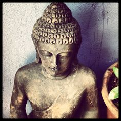 Buddha Tetería