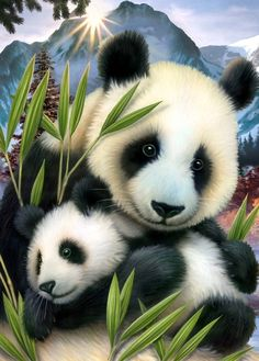 Diamond Painting pandas cross-stitch Diamond embroidery baby picture of rhinestones animals Set for embroidery for needlework Niedlicher Panda, Panda Art, Cute Panda, Cross Paintings, Animal Paintings, Animal Drawings, Drawing Animals, Resin Paintings, Animals And Pets