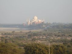 What to See in Agra - View of the Taj Mahal from Agra Fort