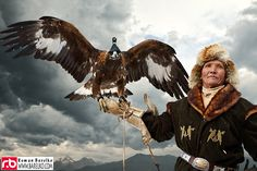 Hunting with golden eagles is a traditional art of the Eurasian steppes, particularly in Central Asia. It is a type of falconry. Professional hunters from Kazakhstan call the practice berkutchy or kusbeguy in Kazakh; it is also called berkutchi by the Kyrgyz people of the Bugu clan. Wikipedia