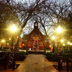 A favorite sight on campus during the holidays. Georgetown University, University Of Washington, College Campus, College Life, Georgetown Hoyas, Washington Dc Area, Catholic University, Dream School, Virginia Is For Lovers