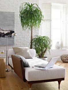 piękna aranżacja salonu z białą cegłą i zielonymi roślinami