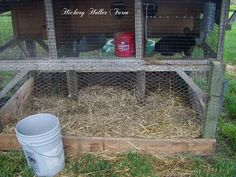 Hickery Holler Farm: Rabbits For Meat