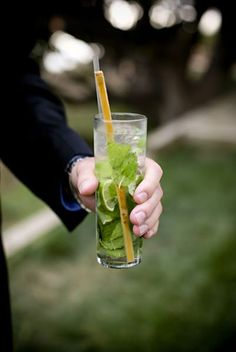 Sugarcane swizzle sticks
