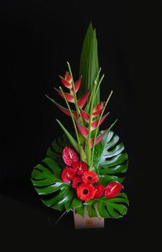 Cool tropical arrangement with gerbera daisies, anthurium, and heliconia Arrangement Floral Ikebana, Arrangements Ikebana, Contemporary Flower Arrangements, Creative Flower Arrangements, Tropical Floral Arrangements, Church Flower Arrangements, Beautiful Flower Arrangements, Flower Centerpieces, Flower Decorations