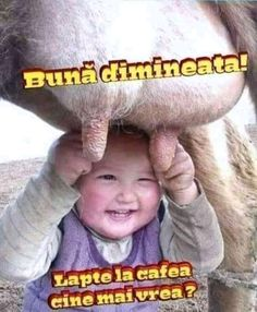 Șotii de copii... Motto, Good Morning, Haha, Smile, Sayings, Funny, Figurine, Bebe, Buen Dia