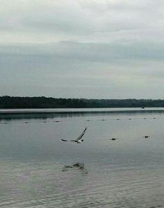 lago Monona, WI