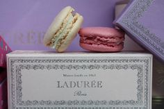 Photography by Rebecca Plotnik. Romantic French Macaroons at Laduree in Paris France - 8x10 Fine Art Photograph- affordable home decor $30.00