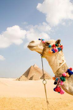 Egypt on the bucket list?