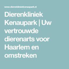 Dierenkliniek Kenaupark | Uw vertrouwde dierenarts voor Haarlem en omstreken