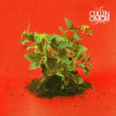 Cullen Omori - New Misery [Loser Edition clear w/ white, black, & gold swirl colored vinyl] Cullen Omori knows it's a false cliche to say there are no seco Roxy Music, New Music, Smith And Western, End Of An Era, Rock News, Great Fear, Music Industry, Lp Vinyl, Will Smith