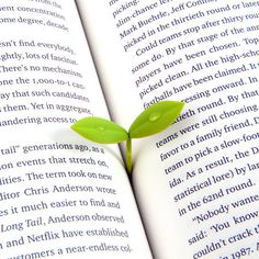 Sprout Bookmarks (Set Of 4) | GEEKYGET