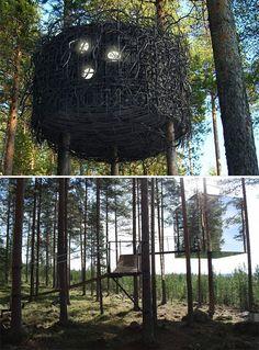 sweden, tree hotel, tree houses, treehous, treehotel, bird nests, trees, birds, hotels