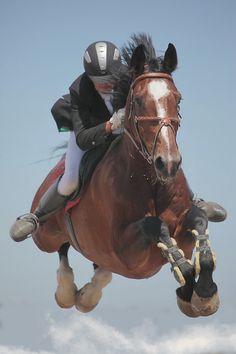 Jump!  #Equestrian